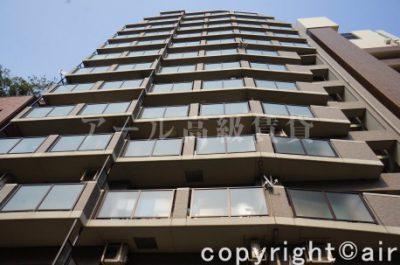 ライオンズマンション西麻布シティの外観写真