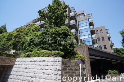 東急ドエル・プレステージ赤坂氷川町の外観